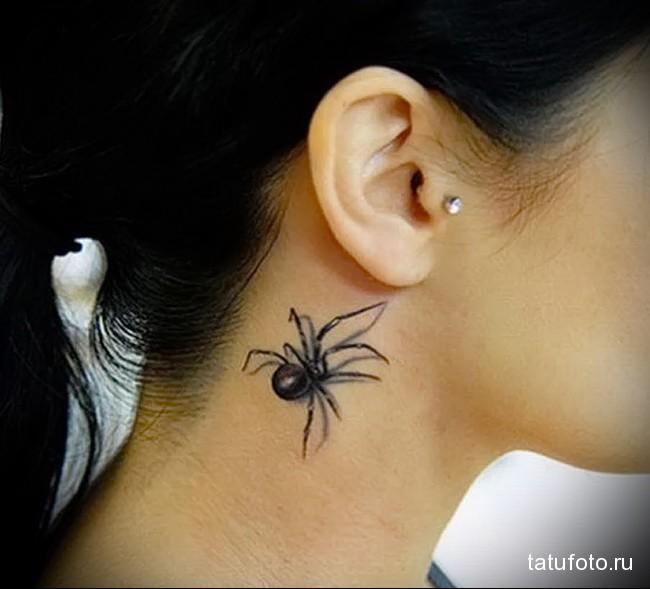 что значит паук в татуировке - фото