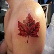 что значит тату кленовый лист – вариант готовой тату на фотографии