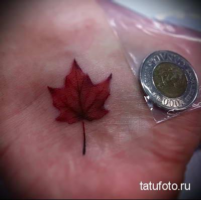 Значение тату кленовый лист 554234