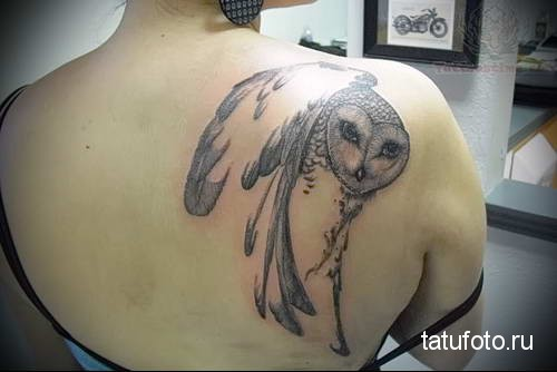 тату перья и голова совы