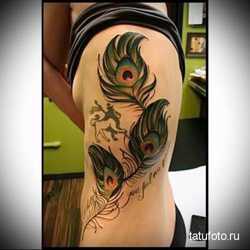 три пера павлина в татуировке на туловище