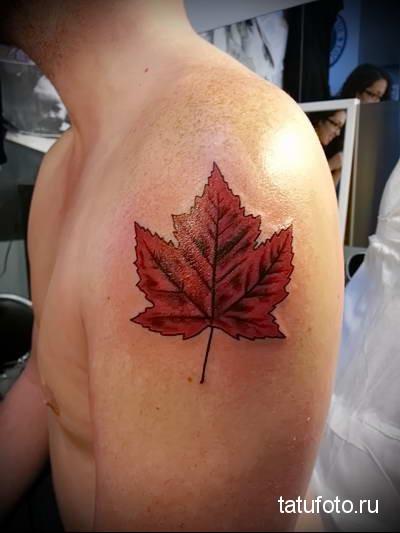 что значит тату кленовый лист - вариант готовой тату на фотографии