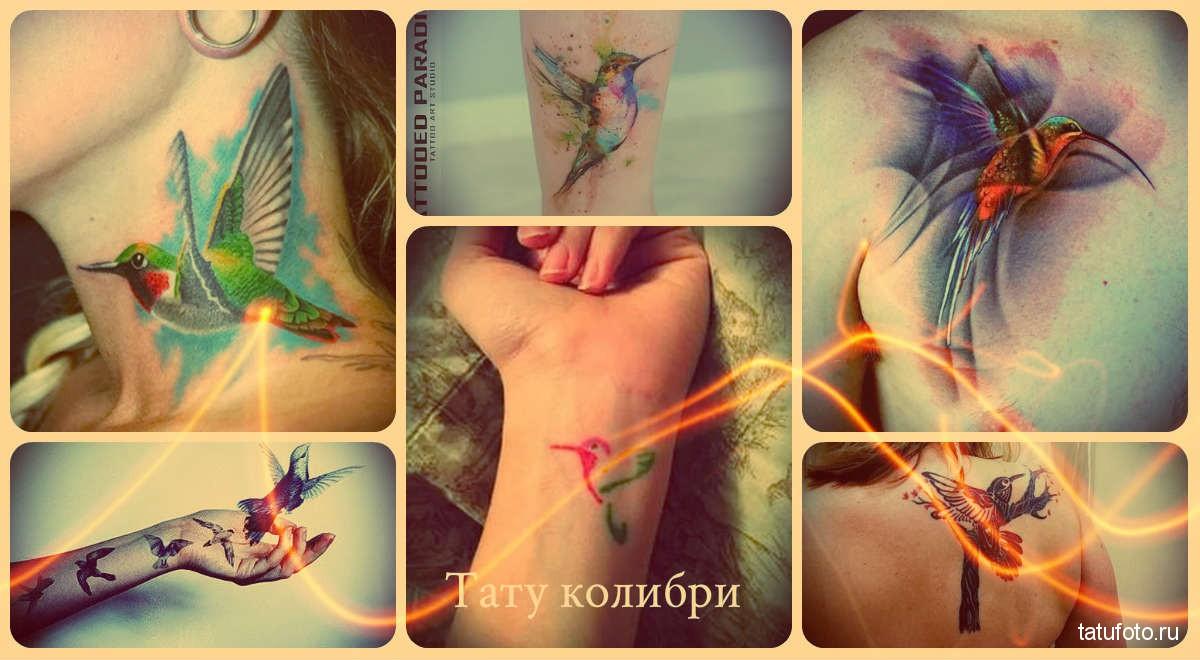 Тату колибри - примеры готовых татуировок на фото