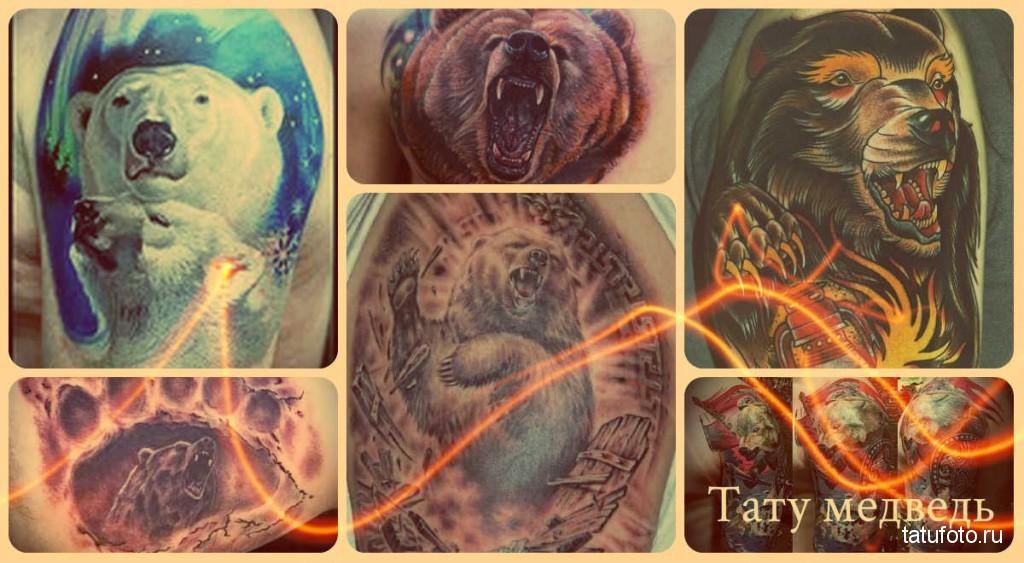 Тату медведь - примеры готовых татуировок на теле