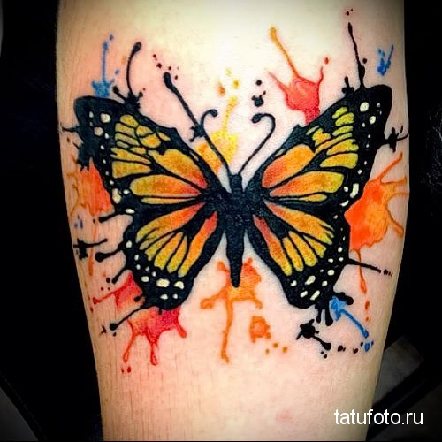 бабочка - тату акварель фото