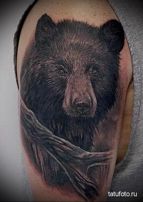 бурый медведь тату 1
