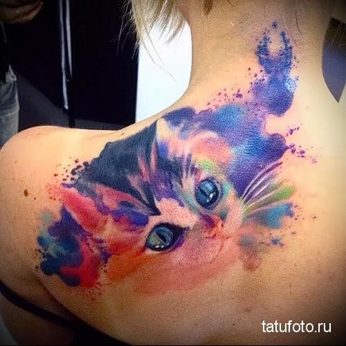 взгляд кошки на спине и шее - тату акварель фото