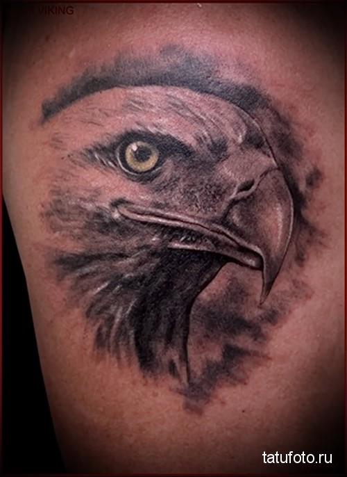 голова орла тату 2