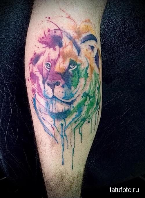 гордый лев - тату акварель фото