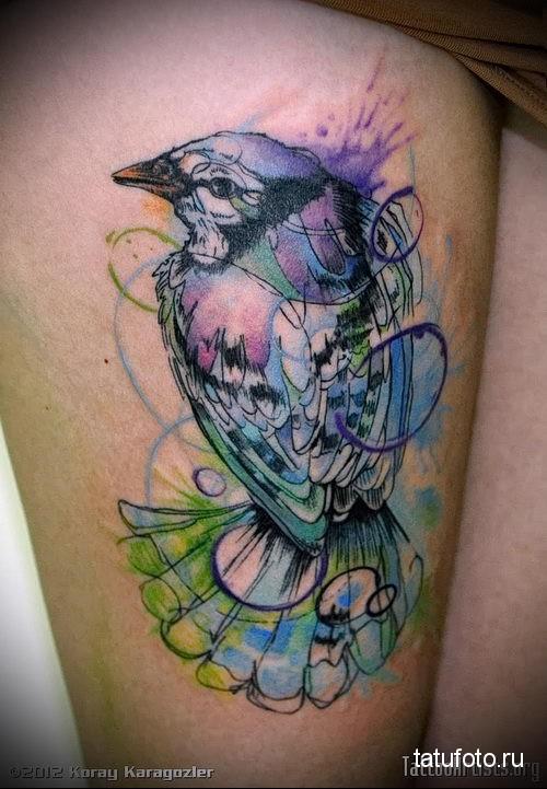 красивая маленькая птичка - тату акварель фото