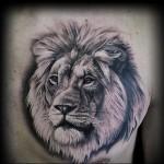 тату голова льва на грудь