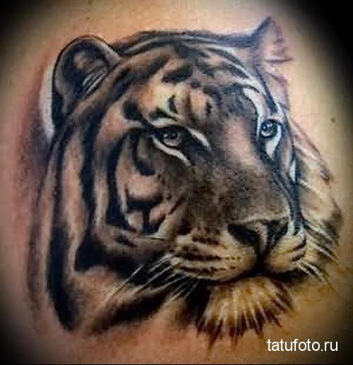 тату голова тигра - идеальный вариант для тату