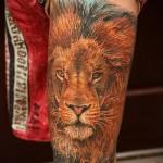 тату лев на ноге - большой размер