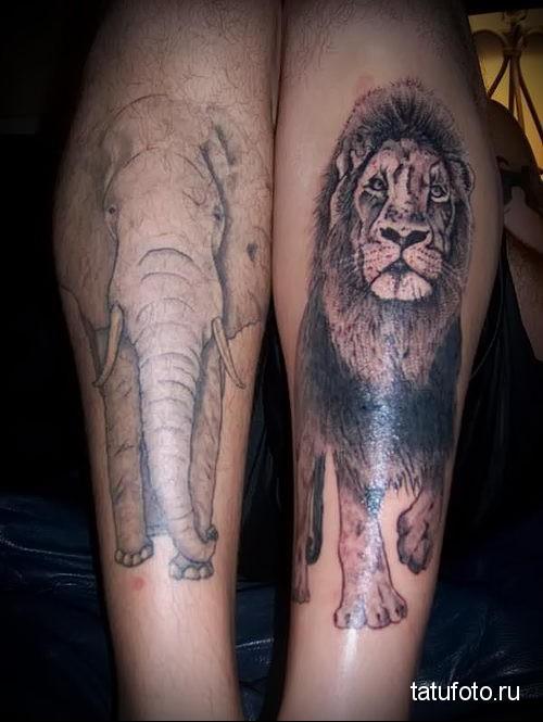 тату лев на ноге и слон
