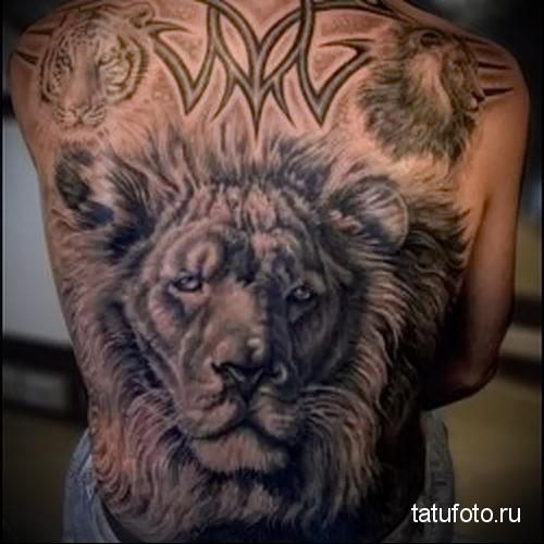 тату лев на спине - рисунок большого размера