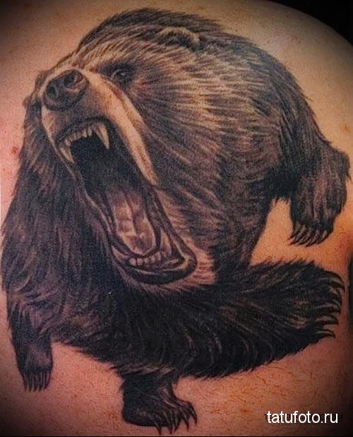 тату медведь на плече в броске (атака)