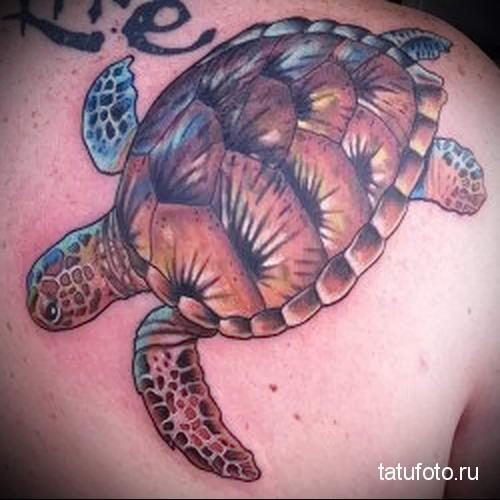 тату морская черепаха 2