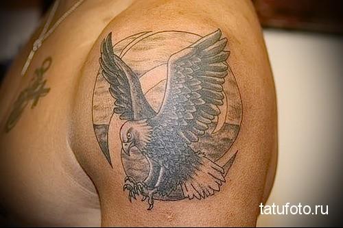 тату орел на плече 2