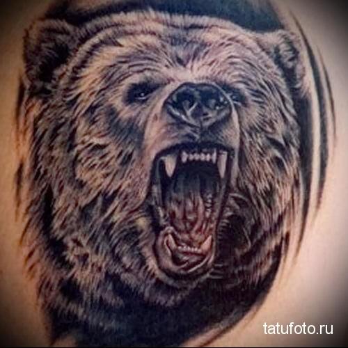 тату оскал медведя пример на фото
