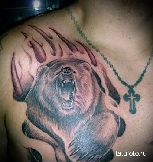 Волк фото оскал