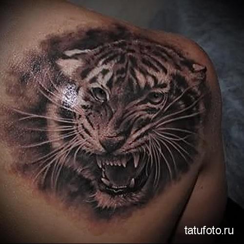 тату оскал тигра на лопатке