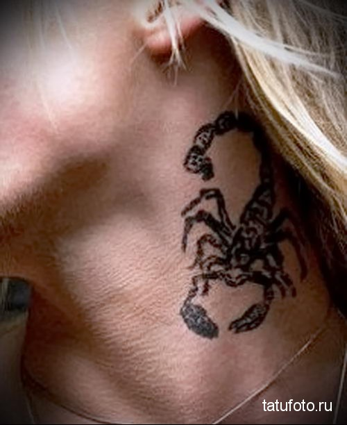 Тату скорпион: фотографии лучших готовых татуировок