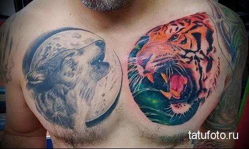 тату тигра на груди и волк