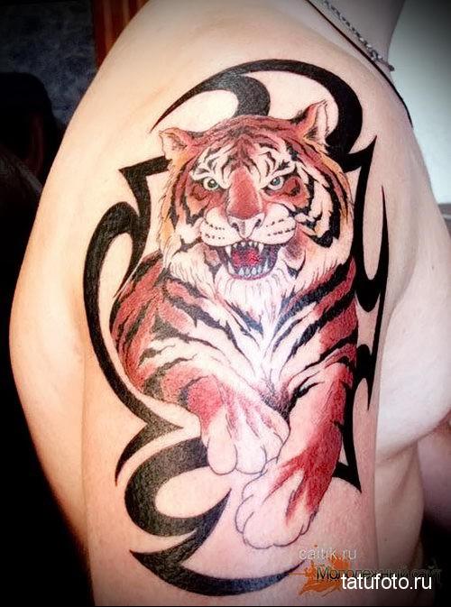 Фото тату тигра на плечё