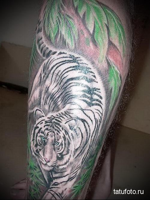 тату тигр на ноге - белый усурийский тигр