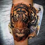 тату тигр на ноге - морда