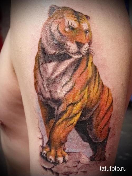 тату тигр на руке - во весь рост