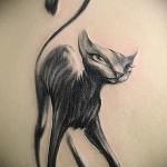 тату черная кошка фото вариант