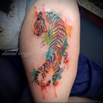 тигр вид сзади - тату акварель фото