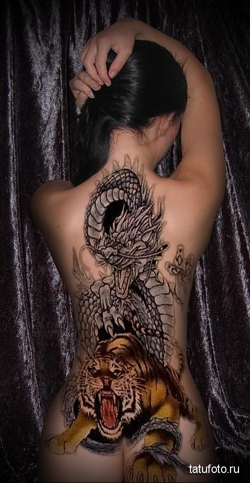 тигр и дракон тату - на спину для девушки