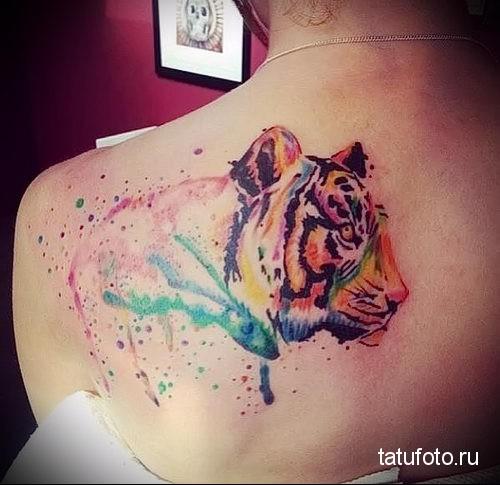 тигр - тату акварель фото