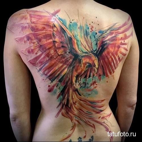 большой феникс на всю спину - тату акварель фото