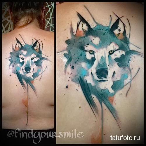 серый волк на спине - тату акварель фото