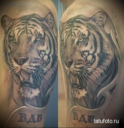 тату вдв тигр на руку