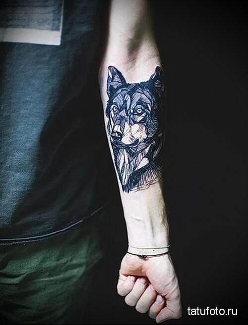 тату волка на предплечье мужская