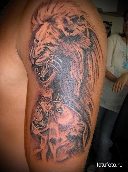 тату лев на плече и львица