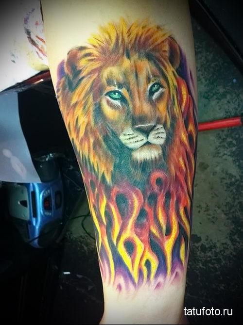 тату лев на руке в огне