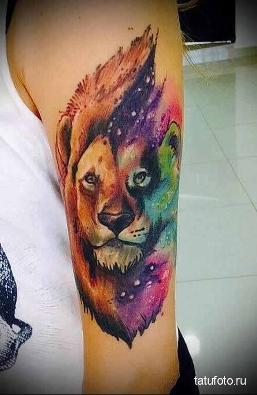 тату лев на руке яркими цветами