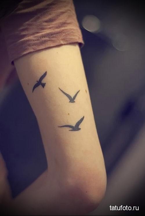 тату маленькие птички на руке 3