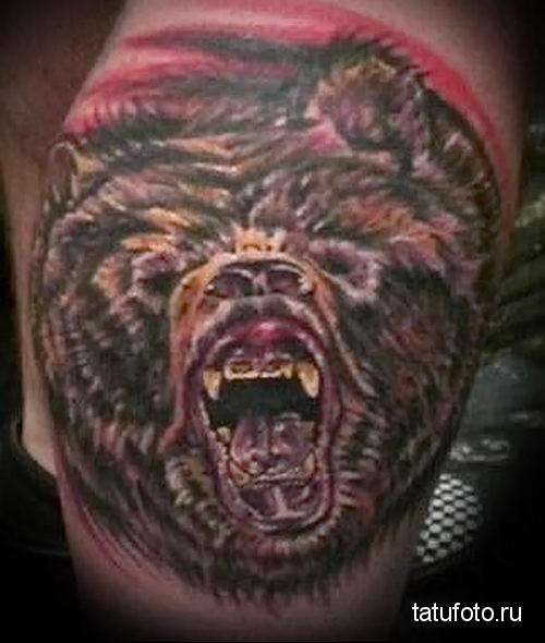тату морда медведя 1