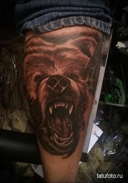 тату морда медведя 2