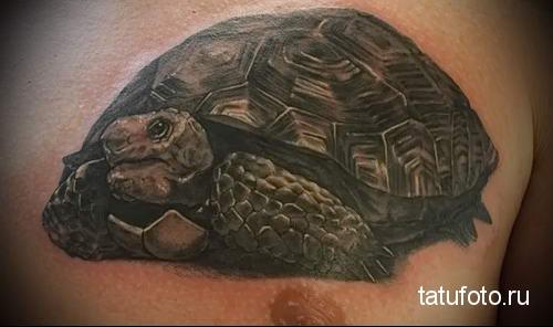 тату морская черепаха 20