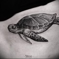 тату морская черепаха 21
