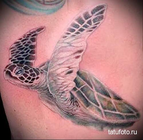тату морская черепаха 8