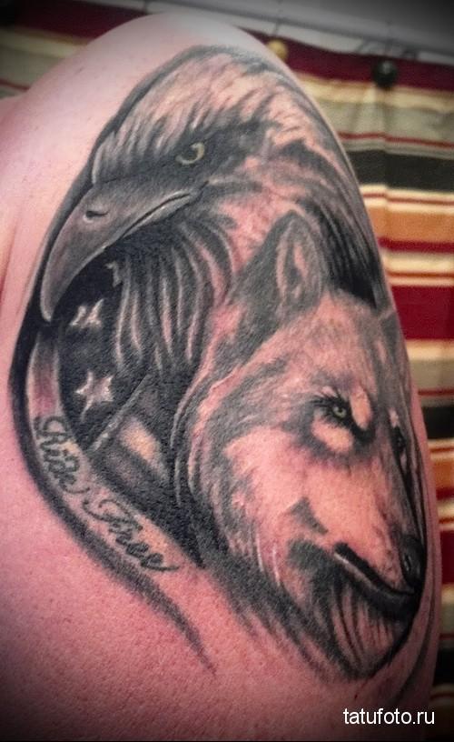 тату орел и волк 1