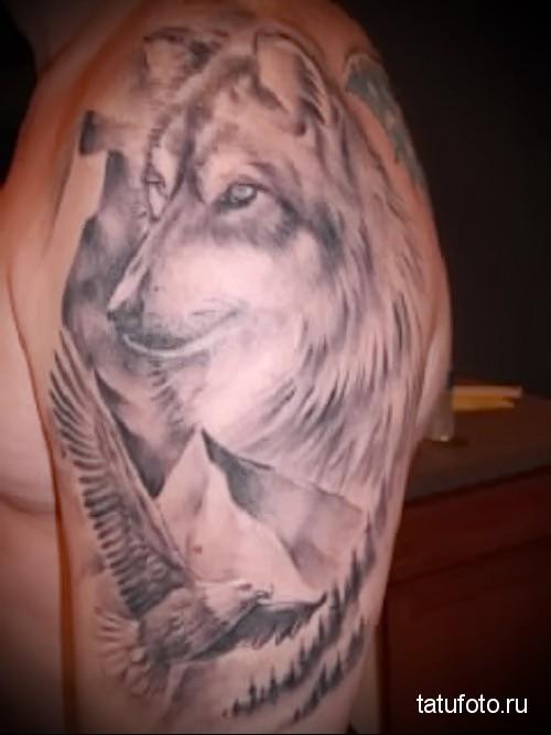 тату орел и волк 2